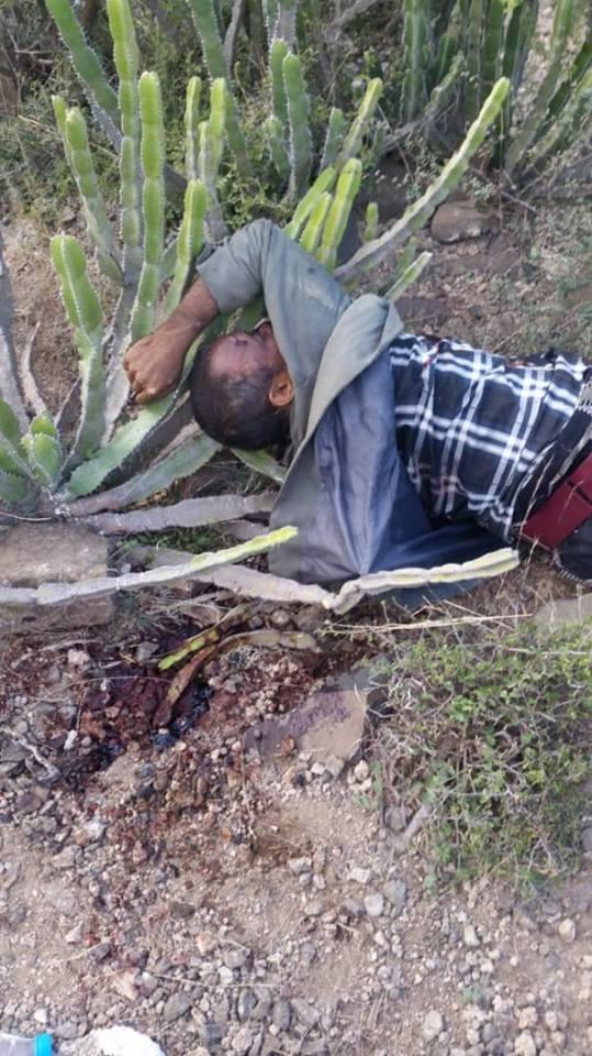 """مصرع 3 حوثيين في كمين نصبه الجيش في """"حمك"""" بالضالع"""